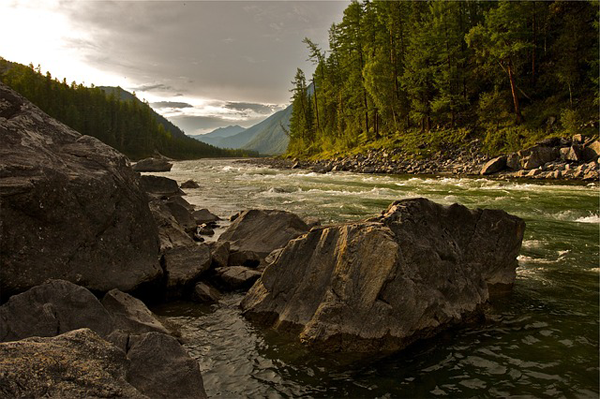 Banks of a Wild River